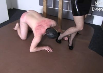 Trampling After Whipping