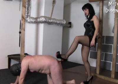 Trampling After Whipping4